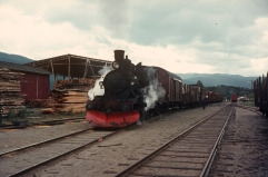21b No.225 works a freight train at Flesberg sawmill in the late 1960s. (Akershusbasen)